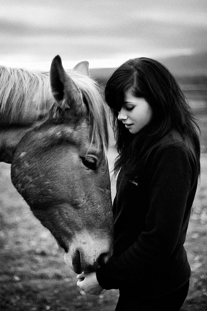 equus 7