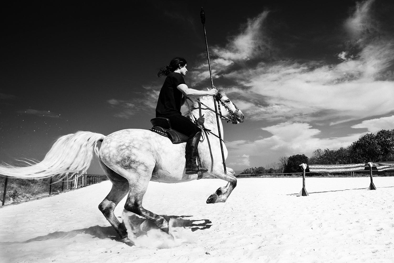 equus 13