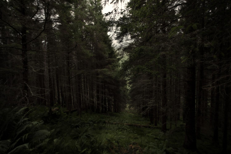 Ecosse – Nicolas Auproux-06